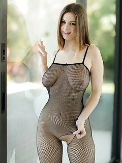 Sheer Bodystocking Lingerie